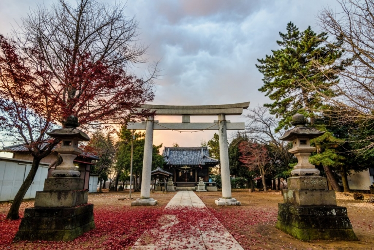 Photo of Japanese Shrine