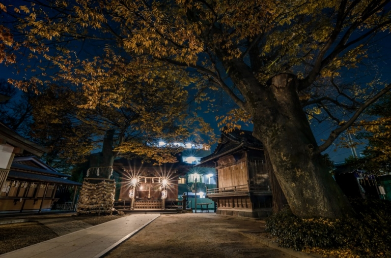 Photo of Matsudo Shrine