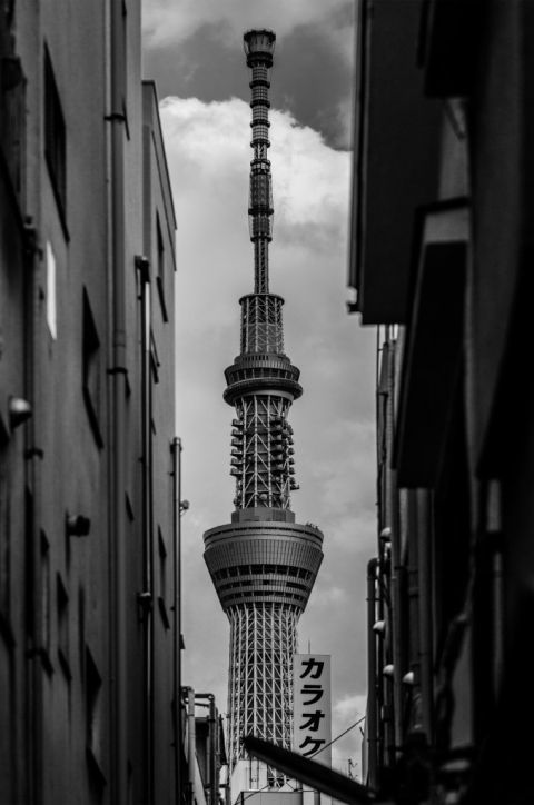 Photo of the Tokyo Skytree