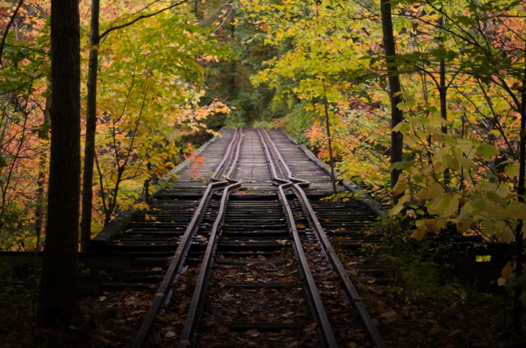 Train Tracks in Autumn