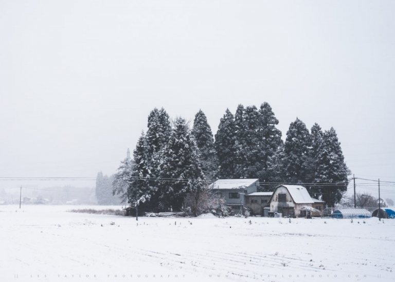 Japanese Farmhouse Snow