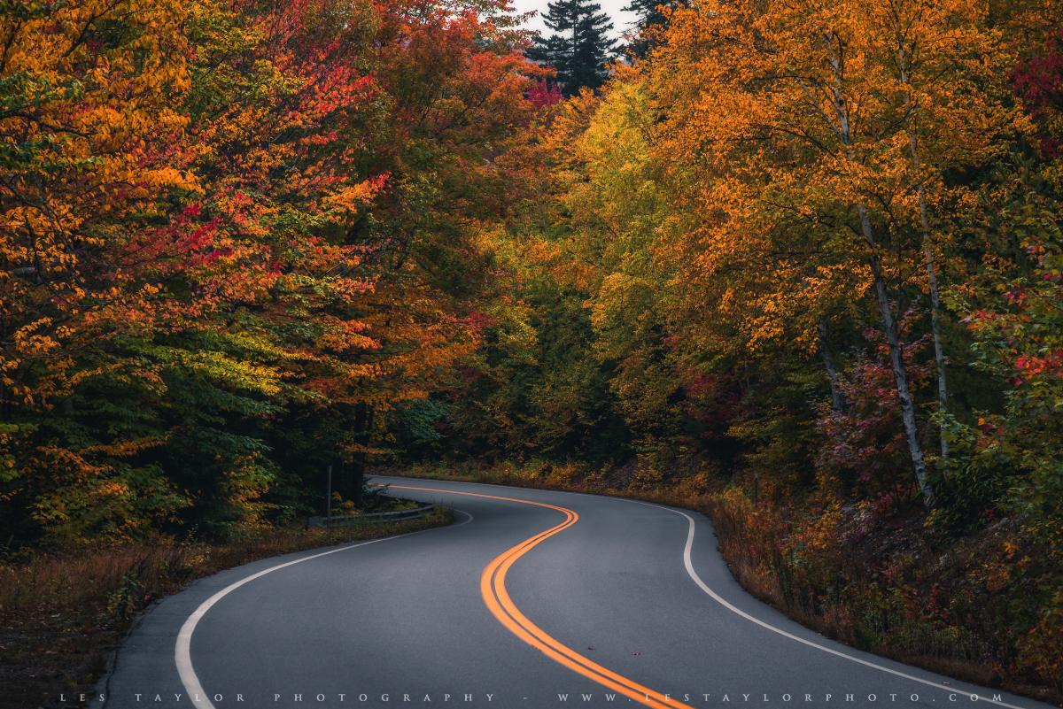Curvy road in autumn