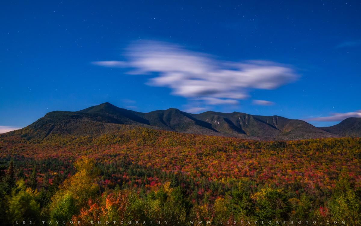 Autumn colors in moonlight